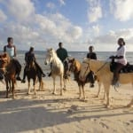 Image_HorsesonBeach_Advenurous Journey